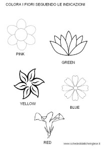 Fiori In Inglese.The Colors Lessons Tes Teach